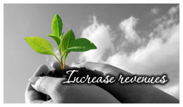 Increase Revenues